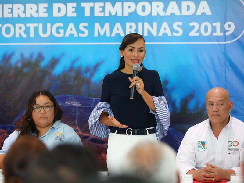 Presentan resultados de la Temporada de Tortugas Marinas 2019