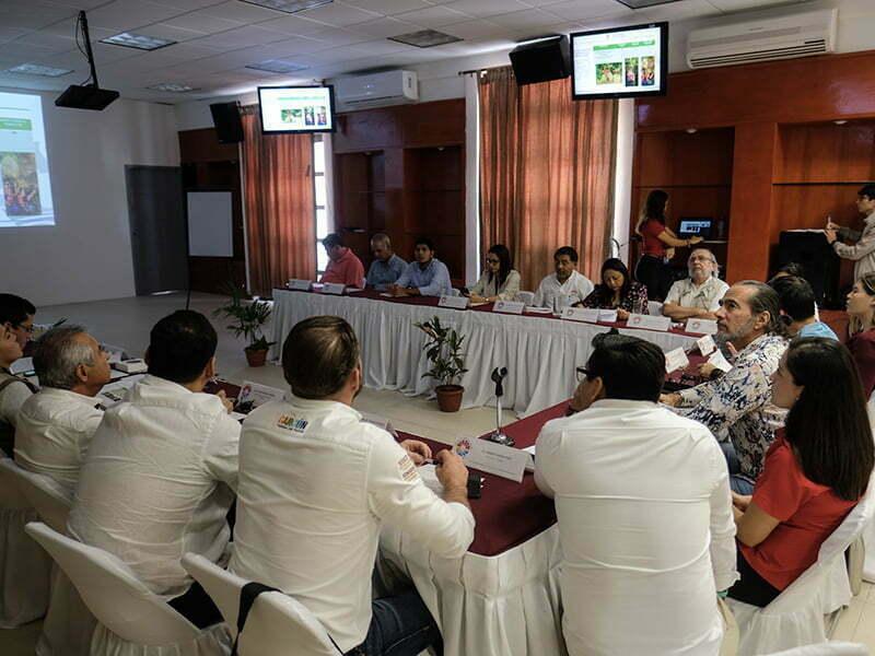 Presentan reporte trimestral en materia de desarrollo sostenible