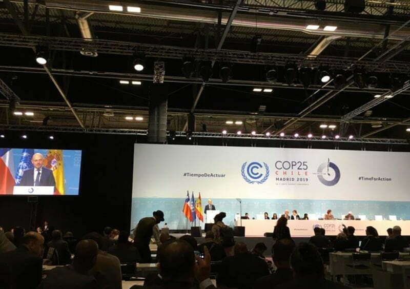 COP 25, urgencia de actuar frente al cambio climático: Cristina Alcayaga