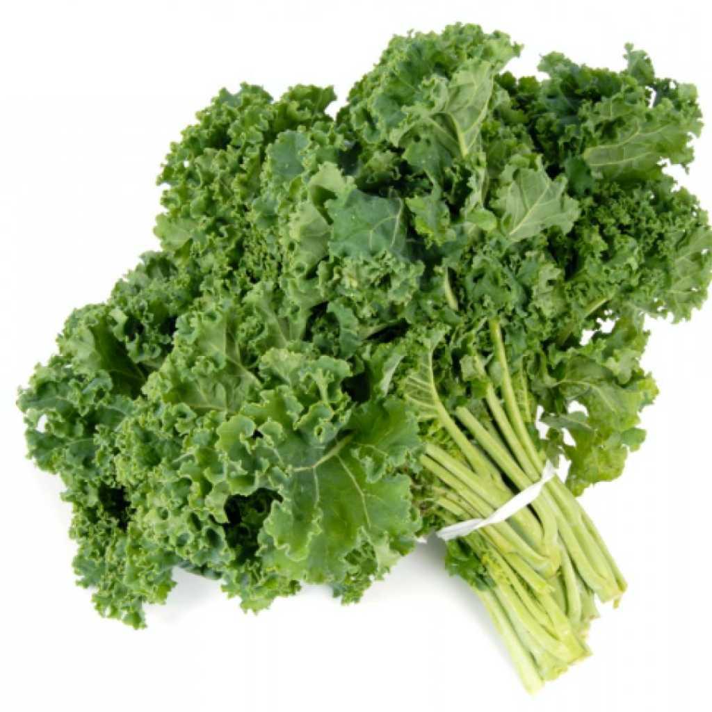 Alimentos saludables para una vida saludable